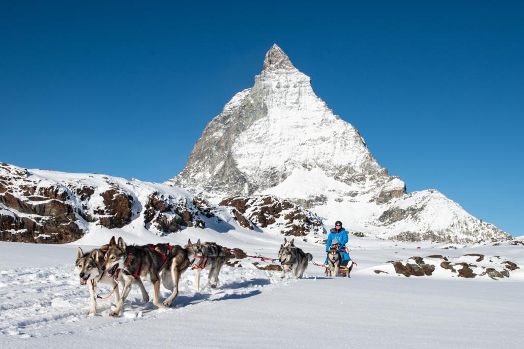 Ein unvergessliches Erlebnis: Einzigartige Fahrten mit Schlittenhunden am Fuss des Matterhorns